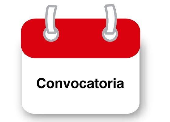 CONVOCATORIA ASAMBLEA GENERAL EXTRAORDINARIA N° 01 DE ACCIONISTAS